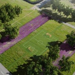 Groenplan-Tuin-landschapsarchitectuur